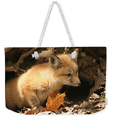 Weekender Tote Bag featuring the photograph Fox Kit At Entrance To Den by Doris Potter