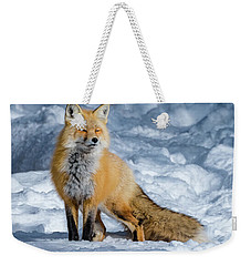 Fox On A Winter Afternoon Weekender Tote Bag