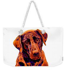 Fox Red Labrador Painting Weekender Tote Bag