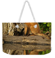 Fox Reflection Weekender Tote Bag by James Peterson