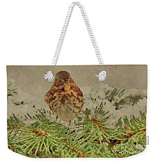 Weekender Tote Bag featuring the photograph Fox Sparrow In Winter by Janette Boyd