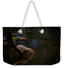 Fox Squirrel Drinking Weekender Tote Bag