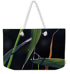 Weekender Tote Bag featuring the photograph Fragment by Linda Lees