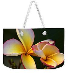 Frangipani Flowers Weekender Tote Bag by Ralph A  Ledergerber-Photography