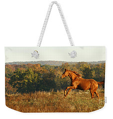 Freedom In The Late Afternoon Weekender Tote Bag