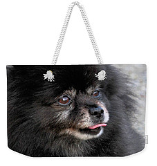 Weekender Tote Bag featuring the photograph Fresh Dog by Debbie Stahre