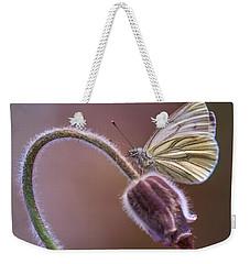 Fresh Pasque Flower And White Butterfly Weekender Tote Bag by Jaroslaw Blaminsky