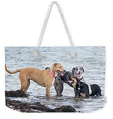 Friends Weekender Tote Bag by Stephanie Hayes