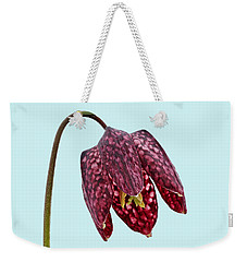 Fritillaria Meleagris - Blue Background Weekender Tote Bag