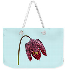 Fritillaria Meleagris Blue Background Weekender Tote Bag