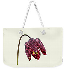 Weekender Tote Bag featuring the photograph Fritillaria Meleagris Cream Background by Paul Gulliver