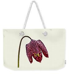 Fritillaria Meleagris Cream Background Weekender Tote Bag