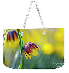Weekender Tote Bag featuring the photograph Fritillaria Reuteri by Tim Gainey
