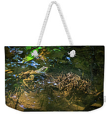 Weekender Tote Bag featuring the photograph Frog Days Of Summer by Bill Pevlor