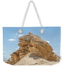 Frog Rock Weekender Tote Bag by Arik Baltinester