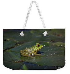 Weekender Tote Bag featuring the photograph Froggy 2 by Douglas Stucky