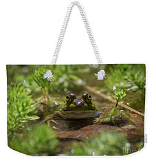 Weekender Tote Bag featuring the photograph Froggy by Douglas Stucky