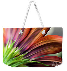 Weekender Tote Bag featuring the photograph From Behind by Wendy Wilton