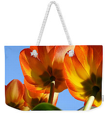 Weekender Tote Bag featuring the photograph From The Bottom by Betty-Anne McDonald