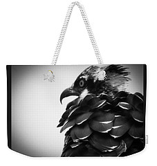 From The Series The Osprey Number 4 Weekender Tote Bag