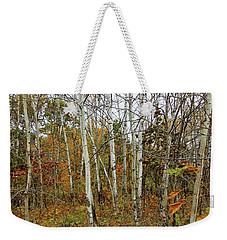 Frontenac State Park Birch Trees Weekender Tote Bag by Jimmy Ostgard