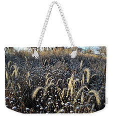 Frosted Foxtail Grasses In Glacial Park Weekender Tote Bag