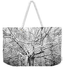Weekender Tote Bag featuring the photograph Frosted by Kendall McKernon