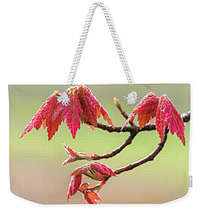 Frosty Maple Leaves Weekender Tote Bag