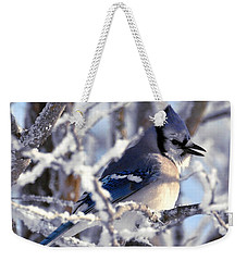 Frosty Morning Blue Jay Weekender Tote Bag