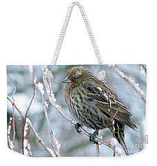 Winter's Perch Weekender Tote Bag