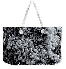 Weekender Tote Bag featuring the photograph Frozen by Alan Vance Ley