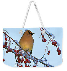Weekender Tote Bag featuring the photograph Frozen Dinner  by Tony Beck