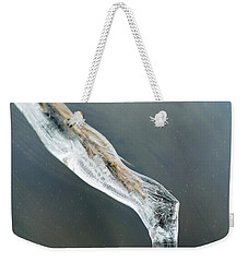 Frozen Pampas Grass Plume  Weekender Tote Bag