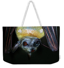 Weekender Tote Bag featuring the photograph Fruit Bat by Anthony Jones
