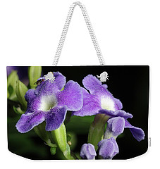 Weekender Tote Bag featuring the photograph Fruit Fly On Golden Dewdrop by Richard Rizzo