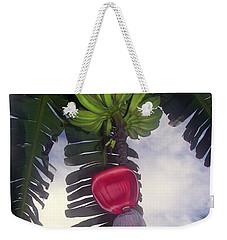 Fruitful Beauty Weekender Tote Bag by Karen Wiles