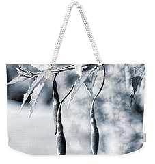 Weekender Tote Bag featuring the photograph Fuchsia Bud by Keith Elliott