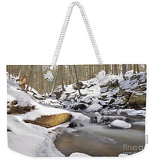 Full Scene  Winter Pool Weekender Tote Bag