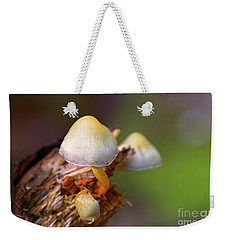 Weekender Tote Bag featuring the photograph Fungi On A Stump by Sharon Talson