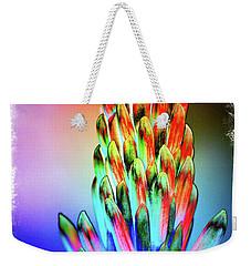 Funky Aloe Weekender Tote Bag