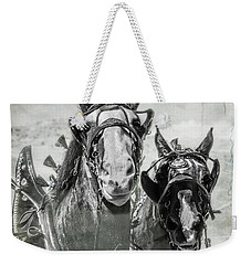 Weekender Tote Bag featuring the photograph Funny Draft Horses by Mary Hone
