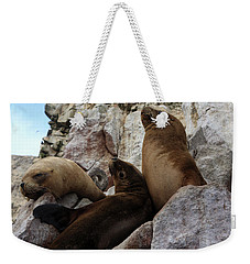 Weekender Tote Bag featuring the photograph Fur Seals On The Ballestas Islands, Peru by Aidan Moran