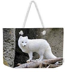 Furry Arctic Fox  Weekender Tote Bag