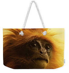 Weekender Tote Bag featuring the photograph Fuzzhead by Xn Tyler