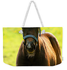 Fuzzy Colt Weekender Tote Bag by Angela Rath