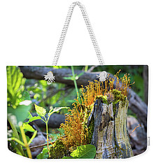 Weekender Tote Bag featuring the photograph Fuzzy Stump by Bill Pevlor