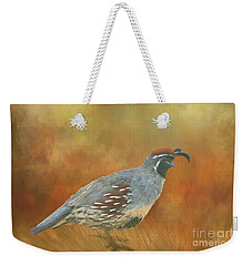 Weekender Tote Bag featuring the photograph Gambel Quail In Death Valley  by Janette Boyd