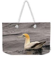 Gannet 5 Weekender Tote Bag