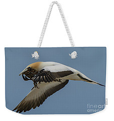 Weekender Tote Bag featuring the photograph Gannets 1 by Werner Padarin