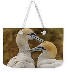 Gannets 4 Weekender Tote Bag by Werner Padarin